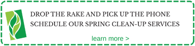 Schedule your spring clean-up